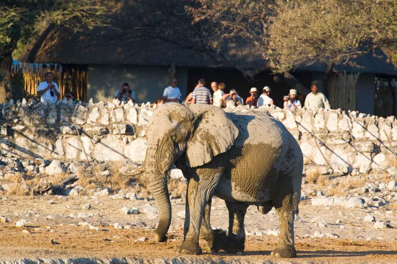 Meet the Locals in Namibië