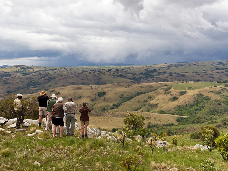 Afbeelding van Nyika Nationaal Park Guided Walk Caroline Culbert Malawi Resources Malawi Tourism